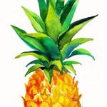 Pineapple image.jpg